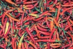 Pimentões vermelhos Imagens de Stock Royalty Free