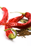 Pimento, caraway and bay leaves Stock Photo