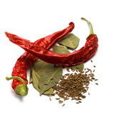 Pimento, caraway and bay leaves royalty free stock images