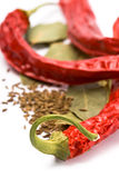 Pimento, caraway and bay leaves Stock Photos