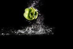 Pimento de Bell verde fresco com respingo da água e bolha isolada Espaço da cópia da pimenta Paprika Dropped Falling verde sucule fotos de stock royalty free