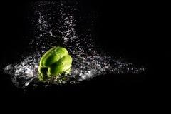 Pimento de Bell verde fresco com respingo da água e bolha isolada Espaço da cópia da pimenta Paprika Dropped Falling verde sucule imagem de stock royalty free