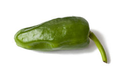 Pimento Padron. With White Background Stock Images
