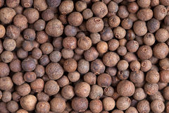 Pimento (pepe della Giamaica) fotografia stock
