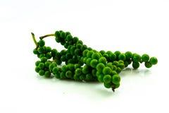 Pimento verde fresco Nigrum Linn Piperaceae do gaiteiro ou grãos de pimenta fotografia de stock