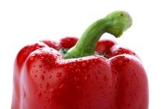 Pimento vermelho fresco Fotos de Stock