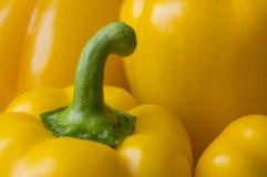 Pimentos amarelos doces frescos Imagens de Stock
