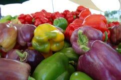 Pimentos de Bell frescos para a venda (amarelo, verde, roxo, vermelho) Fotos de Stock Royalty Free