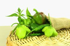 Pimentos de pimentão frescos Fotografia de Stock