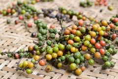 Pimentos frescos. Imagens de Stock Royalty Free