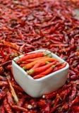 Pimentos frescos na bacia branca e em pimentas vermelhas secadas de baixo grau Imagem de Stock Royalty Free