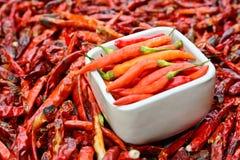 Pimentos frescos na bacia branca e em pimentas vermelhas secadas de baixo grau Fotos de Stock Royalty Free