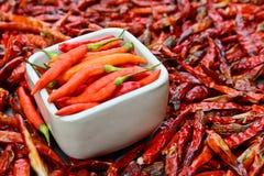 Pimentos frescos na bacia branca e em pimentas vermelhas secadas de baixo grau Imagens de Stock Royalty Free