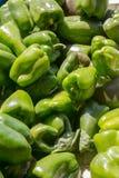 Pimentos verdes frescos do capsicum Fotos de Stock Royalty Free