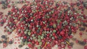 Pimentos vermelhos, pretos, brancos e verdes vídeos de arquivo