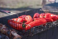 Piments étant prêts pour être grillés sur le gril Photos stock