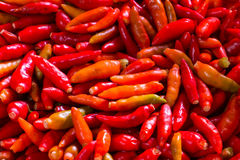 Piments Images stock