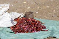 Piments locaux à vendre dans Lalibela photographie stock