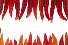 Piments rouges Photos stock