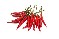 Piments rouges Photo stock