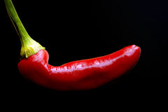 Piments rouges Image stock