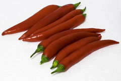 Piments rouges Photos libres de droits