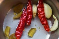 Piments rouges ou mirchi, ail et gingembre rouges Poissons sur l'eau image libre de droits