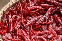 Piments rouges secs Image stock