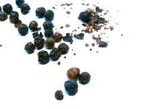 Pimienta Imagen de archivo