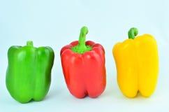 Pimienta amarilla roja verde Imagen de archivo libre de regalías