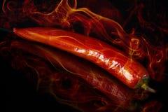 Pimienta caliente Foto de archivo