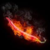 Pimienta caliente Imagen de archivo libre de regalías