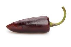Pimienta de chile Foto de archivo