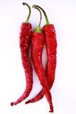 Pimienta de chile rojo Foto de archivo