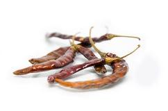 Pimienta de chile rojo secada Fotografía de archivo libre de regalías