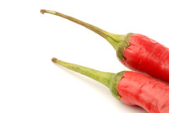 Pimienta de chiles rojos Imagen de archivo libre de regalías