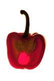 Pimienta dulce Imágenes de archivo libres de regalías