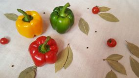 Pimienta dulce de diversos colores, de tomates y de la hoja de laurel imágenes de archivo libres de regalías