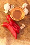 Pimienta dulce, miel y ajo Foto de archivo libre de regalías