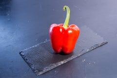 Pimienta dulce roja Imagen de archivo libre de regalías
