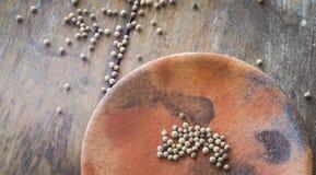 Pimienta en placa de tierra Foto de archivo libre de regalías