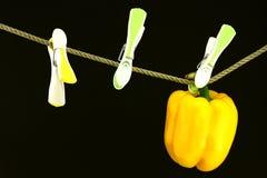 Pimienta en una línea Fotografía de archivo