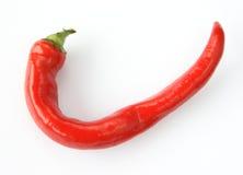 Pimienta fría roja Fotos de archivo