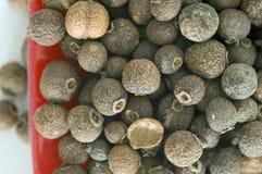 Pimienta inglesa macra Imagen de archivo