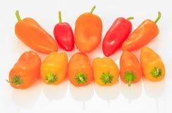 Pimienta multicolora de Mini Sweet Bell Fotos de archivo