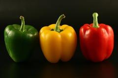 Pimienta multicolora tres Imagen de archivo libre de regalías