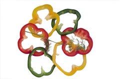 Pimienta rebanada Imagen de archivo libre de regalías