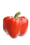 Pimienta roja Foto de archivo libre de regalías
