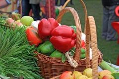 Pimienta roja imagen de archivo