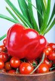 Pimienta roja Imagen de archivo libre de regalías